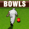 Test your skill and accuracy in this classic bowling game!