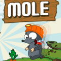 Help Mole collect vegetables without using a square twice!