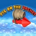 Collect food and rocket fuel to keep your pig flying.